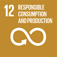 12. Responsible consumption, production